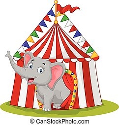 Happy elephant in the circus tent