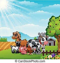 Happy farm animals on daylight
