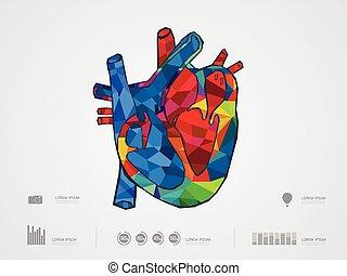 vector illustration of heart