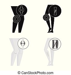 Vector illustration of hospital and rendering icon. Set of hospital and help stock symbol for web.