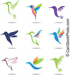 Hummingbird logo  - Vector illustration of Hummingbird logo