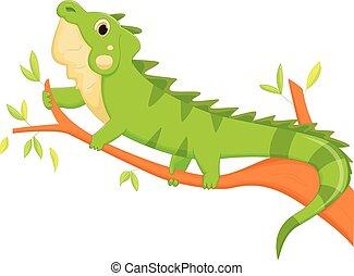 iguana cartoon - vector illustration of iguana cartoon