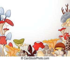 kinds mushrooms white background - vector illustration of...