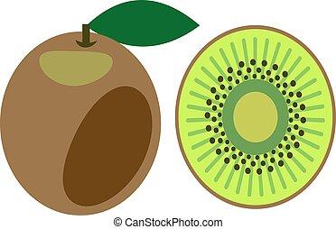 Vector illustration of kiwi