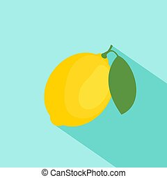 Vector illustration of lemon. Flat design with long shadow