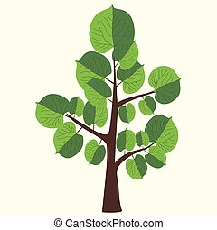 Vector Illustration of lime tree with two color leaves on light yellow background.