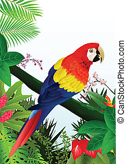 Macaw bird in the tropical forest - Vector Illustration Of ...