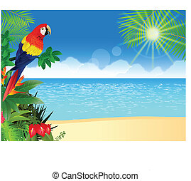 Macaw with tropical beach backgroun - Vector Illustration Of...