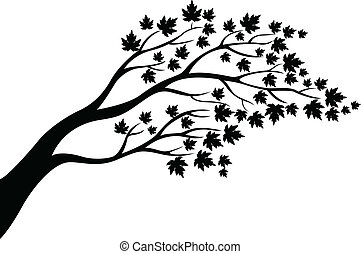 Maple tree silhouette - vector illustration of Maple tree...
