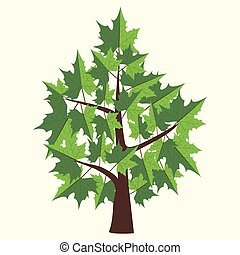 Vector Illustration of maple tree with two color leaves on light yellow background.