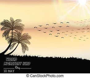 Migratory birds day in sunset light