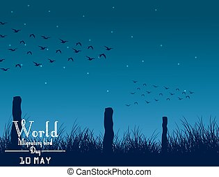 Migratory birds day on night
