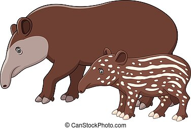 Mother and baby tapir - Vector illustration of Mother and...