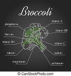 vector illustration of nutrient list for broccoli.