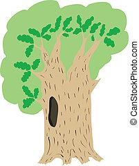 vector illustration of oak