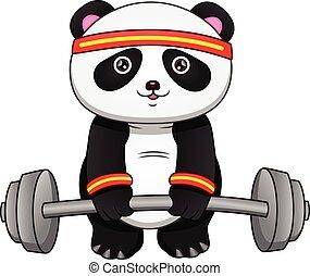 panda cartoon with big barbell