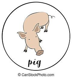 Vector illustration of pig on white background.