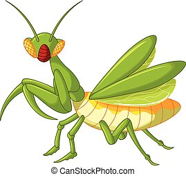 vector illustration of Praying mantis grasshopper cartoon