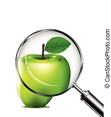 vector illustration of reviewing an green apple with a magnifying glass