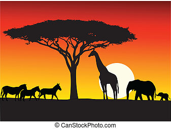 Safari background - Vector Illustration Of Safari background