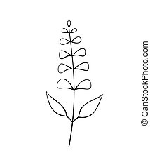 Vector illustration of sage with flower