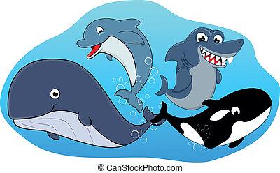 Vector Illustration Of Sea Mammal Set
