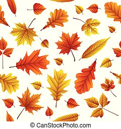 Set of autumn leaves isolated on white background