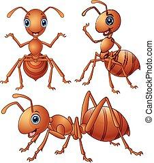 Set of brown ants cartoon