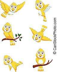 set of Cute Yellow bird cartoon
