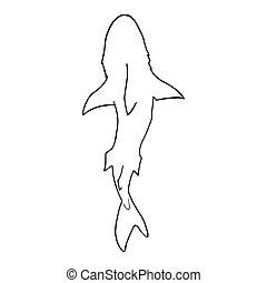 Vector illustration of shark silhouette. Vector shark top view.