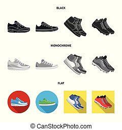 Vector illustration of shoe and sport icon. Set of shoe and fitness stock symbol for web.