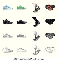 Vector illustration of shoe and sport symbol. Set of shoe and fitness stock symbol for web.