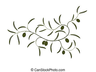 Vector illustration of simple Olive branch three with green olives