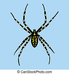 Vector illustration of spider. Argiope bruennichi on blue...