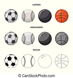 Vector illustration of sport and ball logo. Set of sport and athletic stock symbol for web.