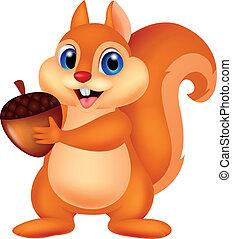 Squirrel cartoon with nut - Vector illustration of Squirrel ...