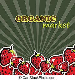 vector illustration of strawberries. organic food concept