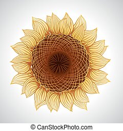 Vector illustration of sunflower. Flower element for design