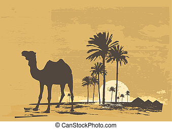 African desert - Vector illustration of sunset in African...