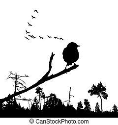 vector illustration of the bird on branch