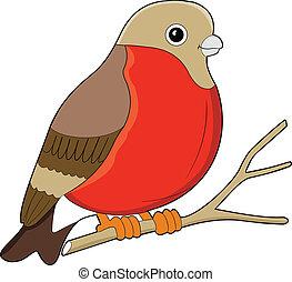 Vector illustration of the bird o