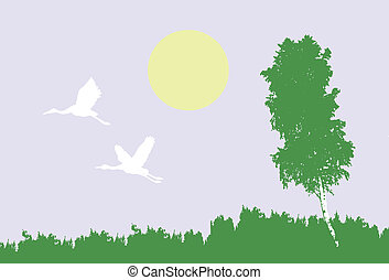 vector illustration of the cranes