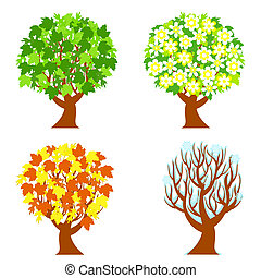 vector illustration of the four seasons trees isolated on white background.