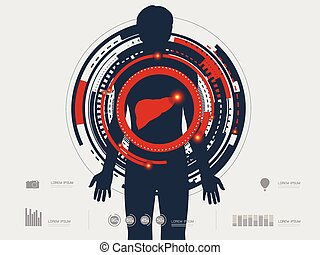 vector illustration of the human li