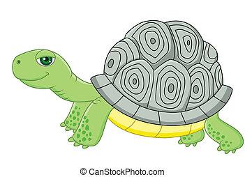 Tortoise cartoon - Vector illustration of Tortoise cartoon
