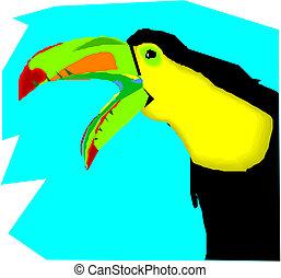 Vector Illustration of toucan bird.