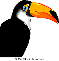 Vector Illustration of toucan bird.