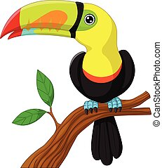 toucan cartoon sitting on the branc
