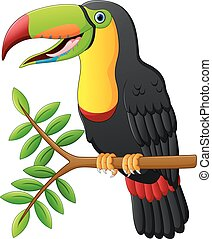 toucan cartoon sitting