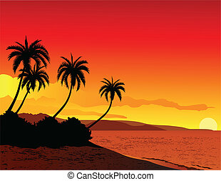 vector illustration of tropical beach sunset